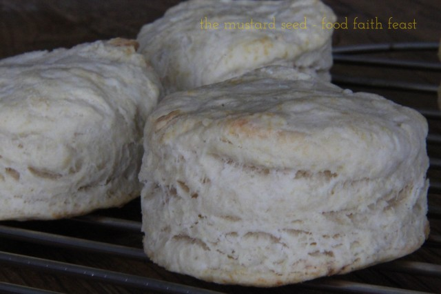 3 Ingredient Vegan Biscuits