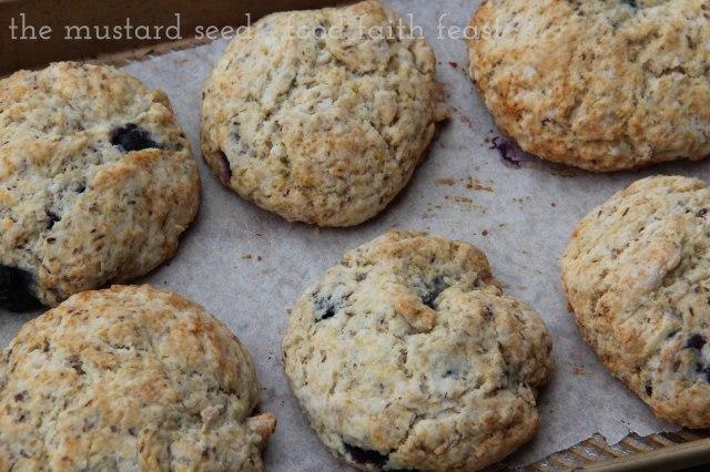 Coconut Oil Blueberry Scones.jpg